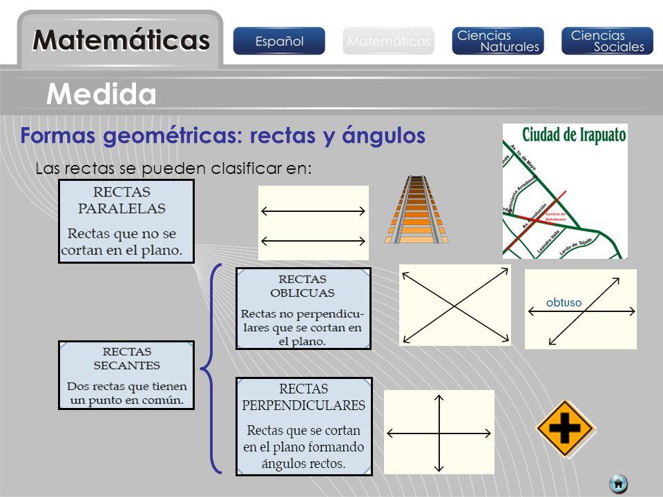 Medida Formas geométricas: rectas y ángulos Las rectas se pueden clasificar en: