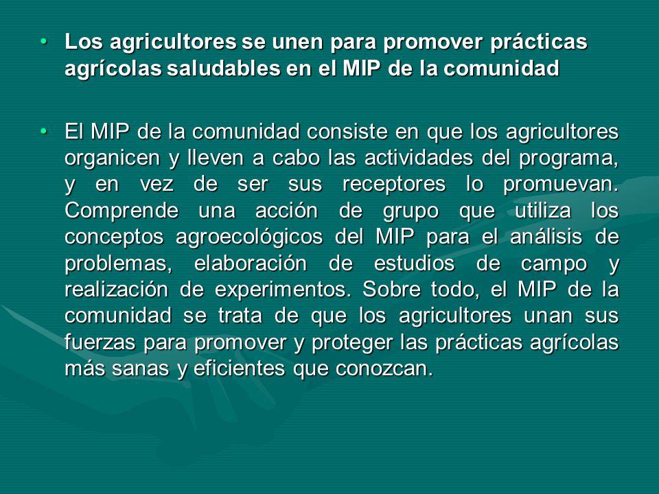 Los agricultores se unen para promover prácticas agrícolas saludables en el MIP de la comunidadLos agricultores se unen para promover prácticas agríco