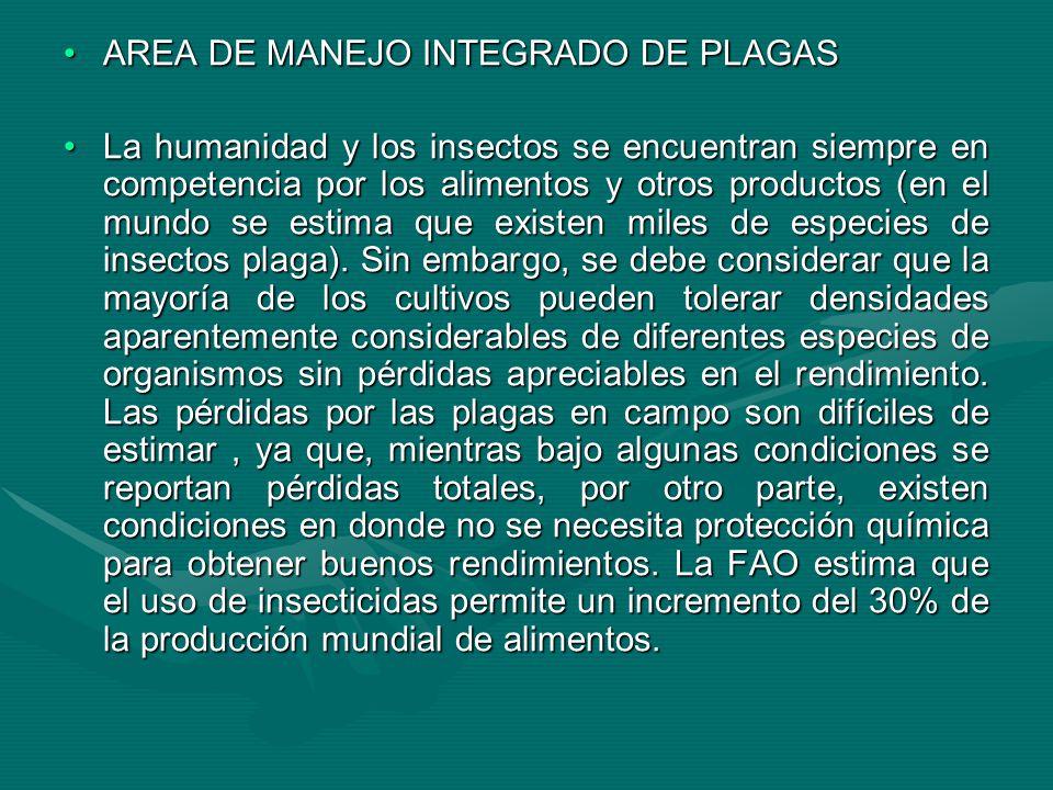 AREA DE MANEJO INTEGRADO DE PLAGASAREA DE MANEJO INTEGRADO DE PLAGAS La humanidad y los insectos se encuentran siempre en competencia por los alimento