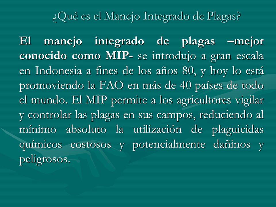 ¿Qué es el Manejo Integrado de Plagas? El manejo integrado de plagas –mejor conocido como MIP- se introdujo a gran escala en Indonesia a fines de los