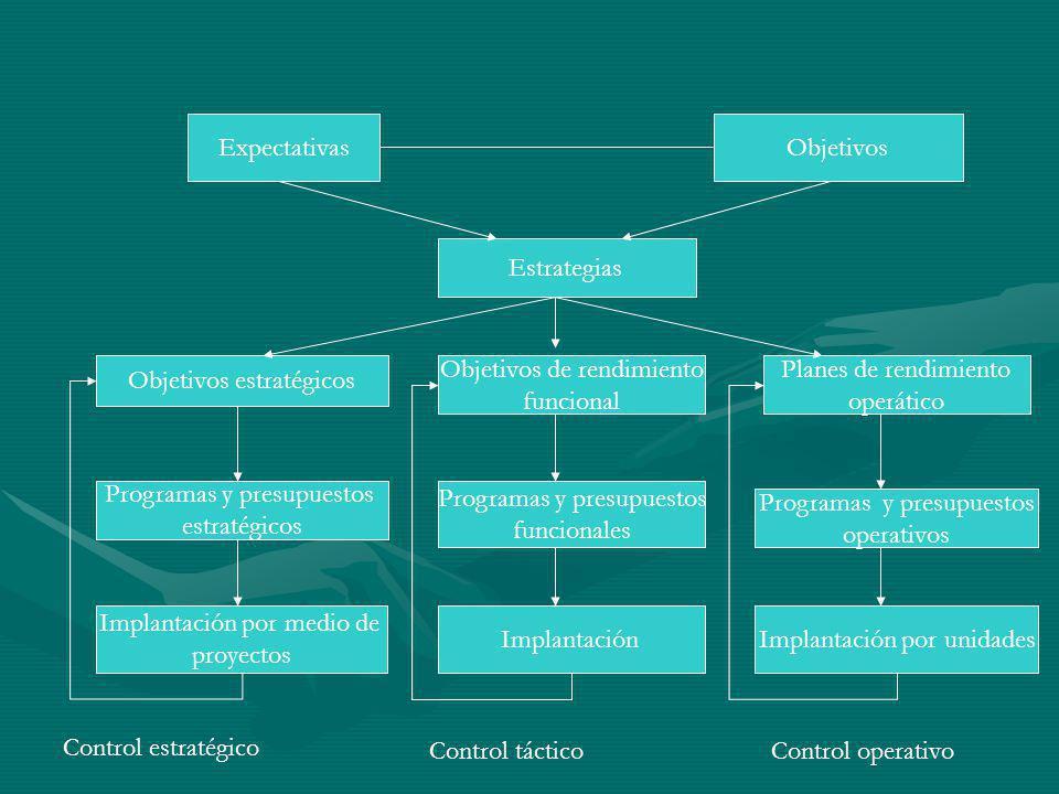 ExpectativasObjetivos Estrategias Objetivos estratégicos Programas y presupuestos estratégicos Implantación por medio de proyectos Control estratégico