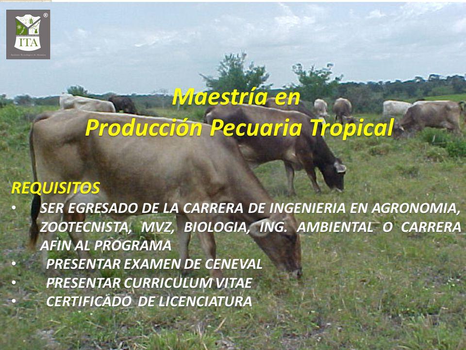 Maestría en Producción Pecuaria Tropical Producción Pecuaria TropicalREQUISITOS SER EGRESADO DE LA CARRERA DE INGENIERIA EN AGRONOMIA, ZOOTECNISTA, MV