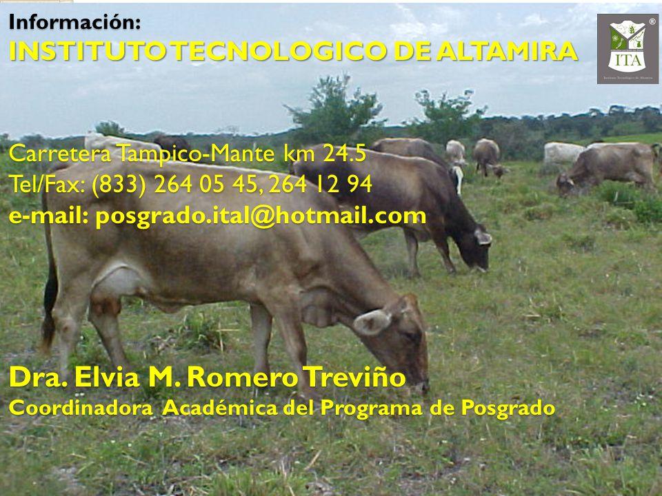 Información: INSTITUTO TECNOLOGICO DE ALTAMIRA Carretera Tampico-Mante km 24.5 Tel/Fax: (833) 264 05 45, 264 12 94 e-mail: posgrado.ital@hotmail.com D