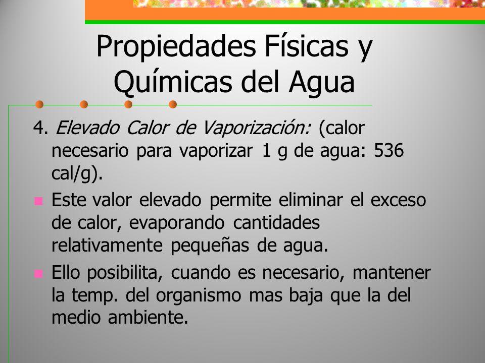Propiedades Físicas y Químicas del Agua 4. Elevado Calor de Vaporización: (calor necesario para vaporizar 1 g de agua: 536 cal/g). Este valor elevado