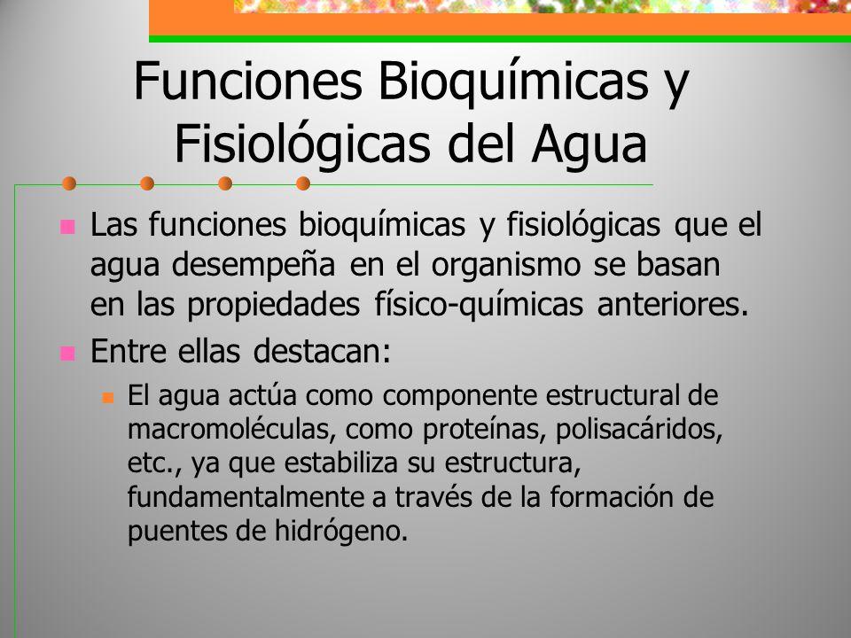 Funciones Bioquímicas y Fisiológicas del Agua Las funciones bioquímicas y fisiológicas que el agua desempeña en el organismo se basan en las propiedad