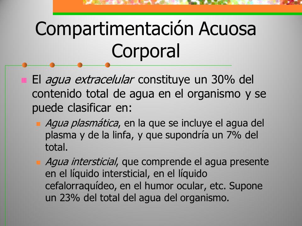 Compartimentación Acuosa Corporal El agua extracelular constituye un 30% del contenido total de agua en el organismo y se puede clasificar en: Agua pl