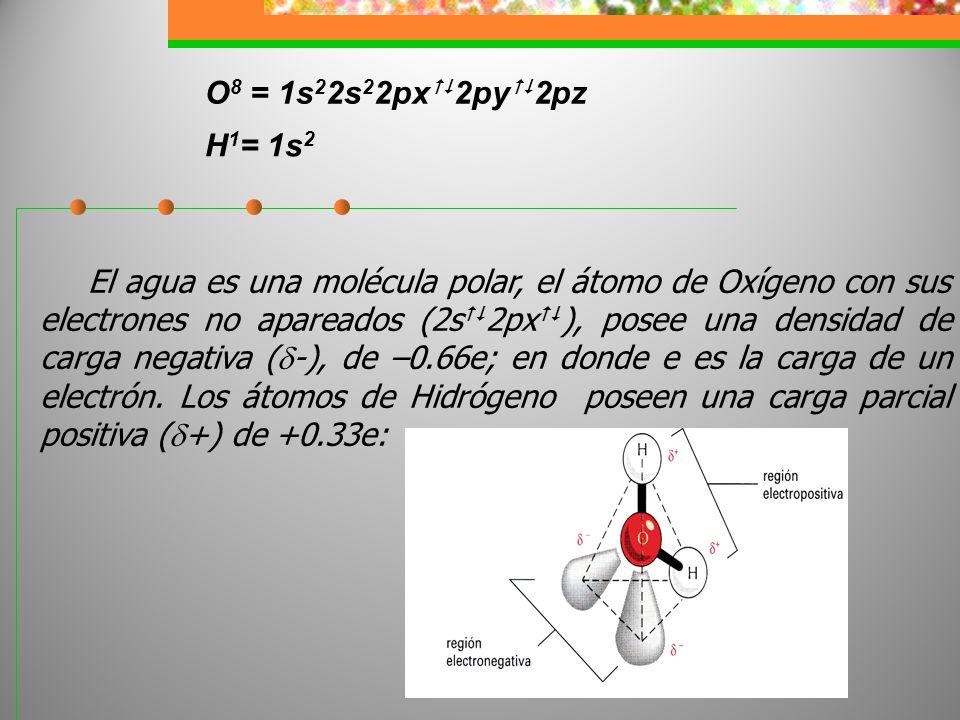 El agua es una molécula polar, el átomo de Oxígeno con sus electrones no apareados (2s 2px ), posee una densidad de carga negativa ( -), de –0.66e; en