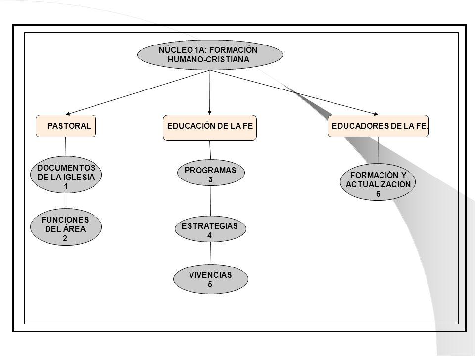 PASTORALEDUCACIÓN DE LA FEEDUCADORES DE LA FE. NÚCLEO 1A: FORMACIÓN HUMANO-CRISTIANA DOCUMENTOS DE LA IGLESIA 1 FUNCIONES DEL ÁREA 2 PROGRAMAS 3 ESTRA