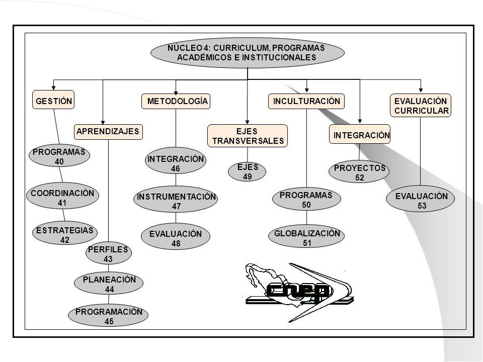NÚCLEO 4: CURRICULUM, PROGRAMAS ACADÉMICOS E INSTITUCIONALES GESTIÓN APRENDIZAJES METODOLOGÍA EJES TRANSVERSALES INCULTURACIÓN INTEGRACIÓN EVALUACIÓN