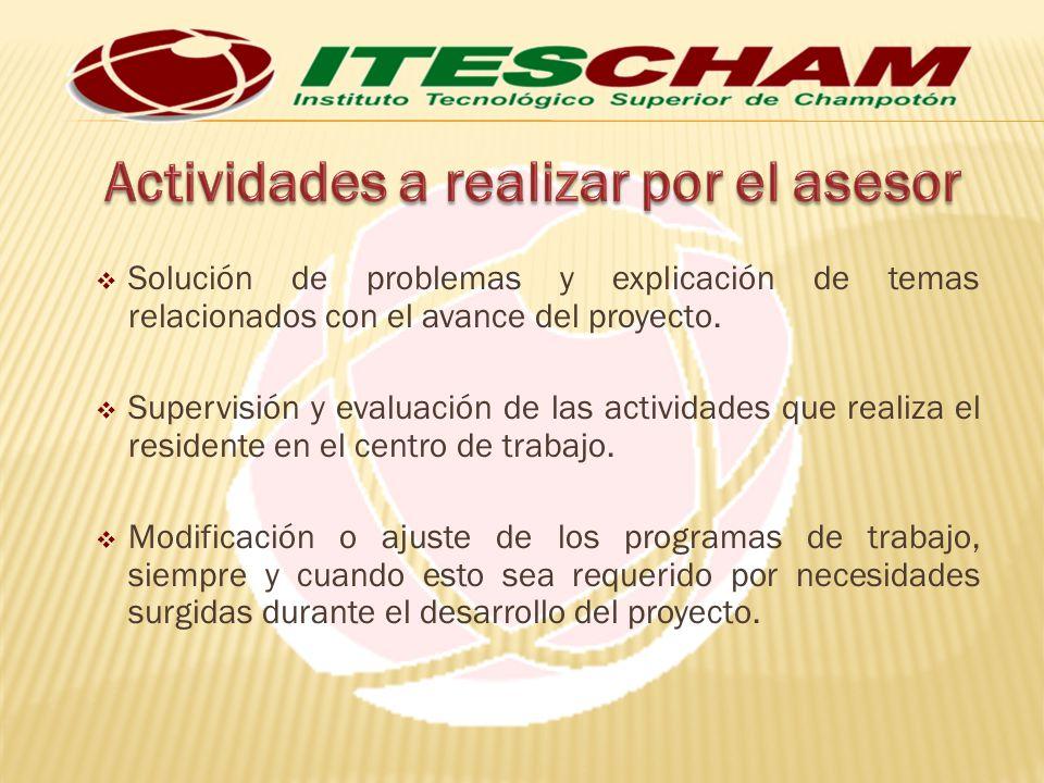 Solución de problemas y explicación de temas relacionados con el avance del proyecto.