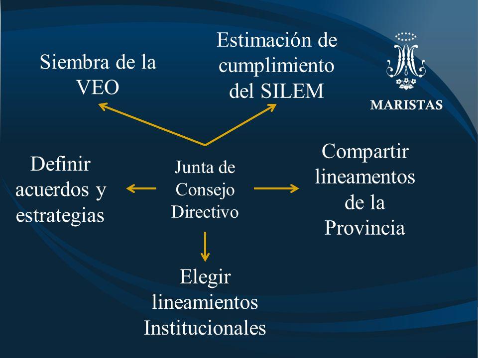 Siembra de la VEO Junta de Consejo Directivo Definir acuerdos y estrategias Elegir lineamientos Institucionales Compartir lineamentos de la Provincia Estimación de cumplimiento del SILEM