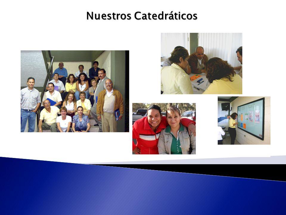 Nuestros Catedráticos