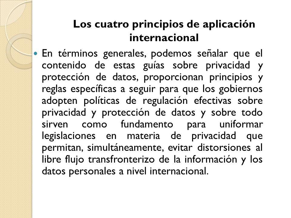 En términos generales, podemos señalar que el contenido de estas guías sobre privacidad y protección de datos, proporcionan principios y reglas especí