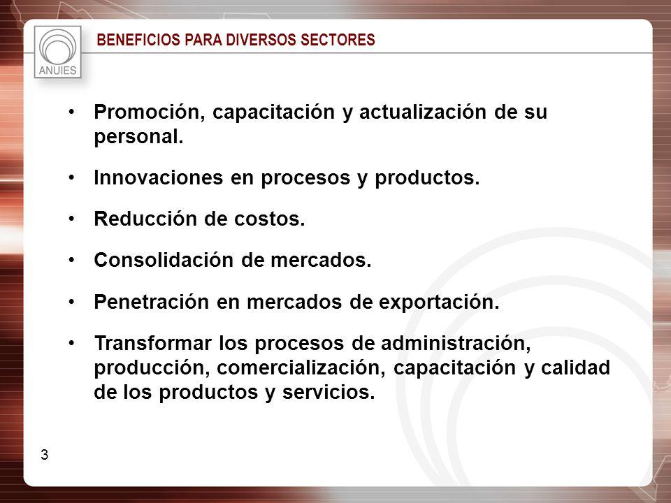 Promoción, capacitación y actualización de su personal. Innovaciones en procesos y productos. Reducción de costos. Consolidación de mercados. Penetrac