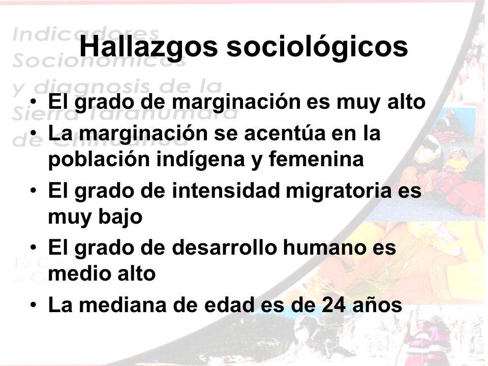 Hallazgos sociológicos El grado de marginación es muy alto La marginación se acentúa en la población indígena y femenina El grado de intensidad migratoria es muy bajo El grado de desarrollo humano es medio alto La mediana de edad es de 24 años