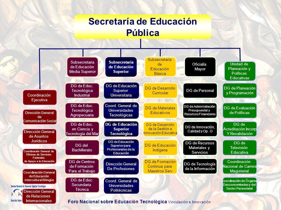Foro Nacional sobre Educación Tecnológica Vinculación e Innovación SNEST El SNEST está consolidado como un sistema de educación superior tecnológica de vanguardia a nivel internacional, y contribuye de manera destacada en el desarrollo sustentable de las regiones, en el fortalecimiento de la soberanía nacional y en el posicionamiento de México en el ámbito internacional.