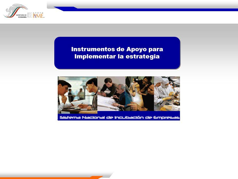 Instrumentos de Apoyo para Implementar la estrategia Instrumentos de Apoyo para Implementar la estrategia