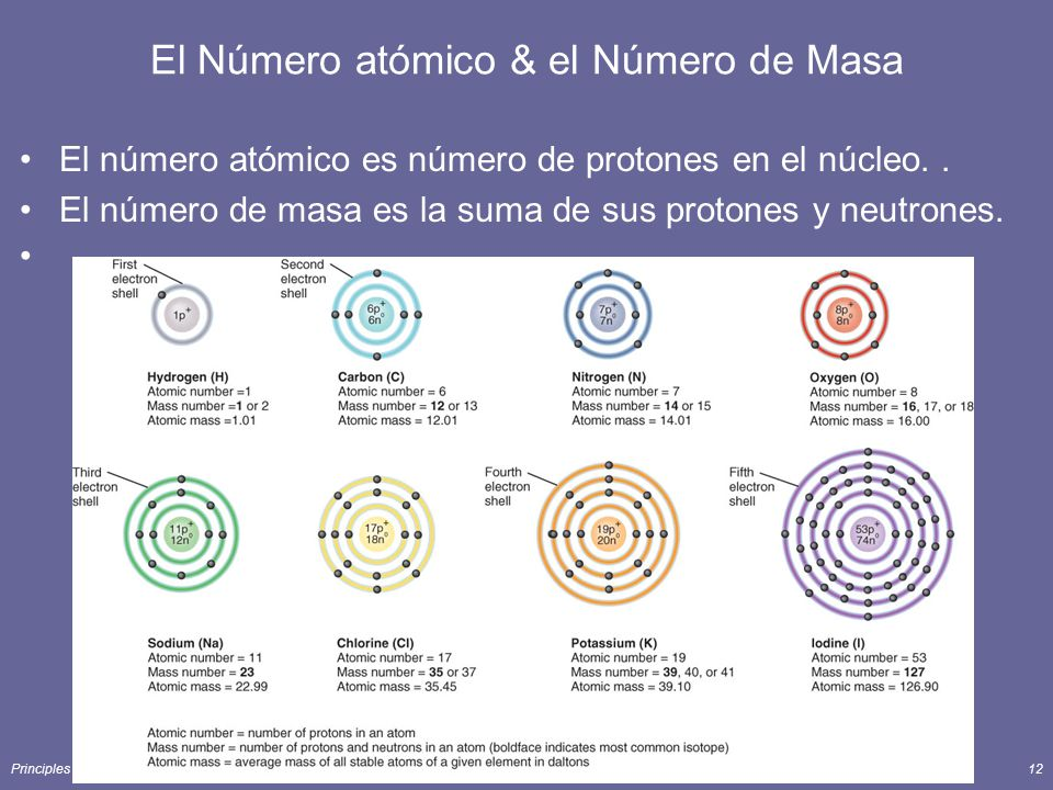 Principles of Human Anatomy and Physiology, 11e12 El Número atómico & el Número de Masa El número atómico es número de protones en el núcleo.. El núme