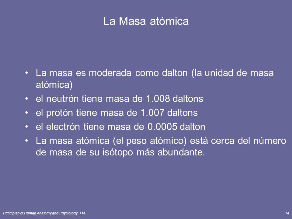 Principles of Human Anatomy and Physiology, 11e14 La Masa atómica La masa es moderada como dalton (la unidad de masa atómica) el neutrón tiene masa de 1.008 daltons el protón tiene masa de 1.007 daltons el electrón tiene masa de 0.0005 dalton La masa atómica (el peso atómico) está cerca del número de masa de su isótopo más abundante.