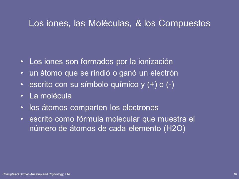 Principles of Human Anatomy and Physiology, 11e16 Los iones, las Moléculas, & los Compuestos Los iones son formados por la ionización un átomo que se rindió o ganó un electrón escrito con su símbolo químico y (+) o (-) La molécula los átomos comparten los electrones escrito como fórmula molecular que muestra el número de átomos de cada elemento (H2O)
