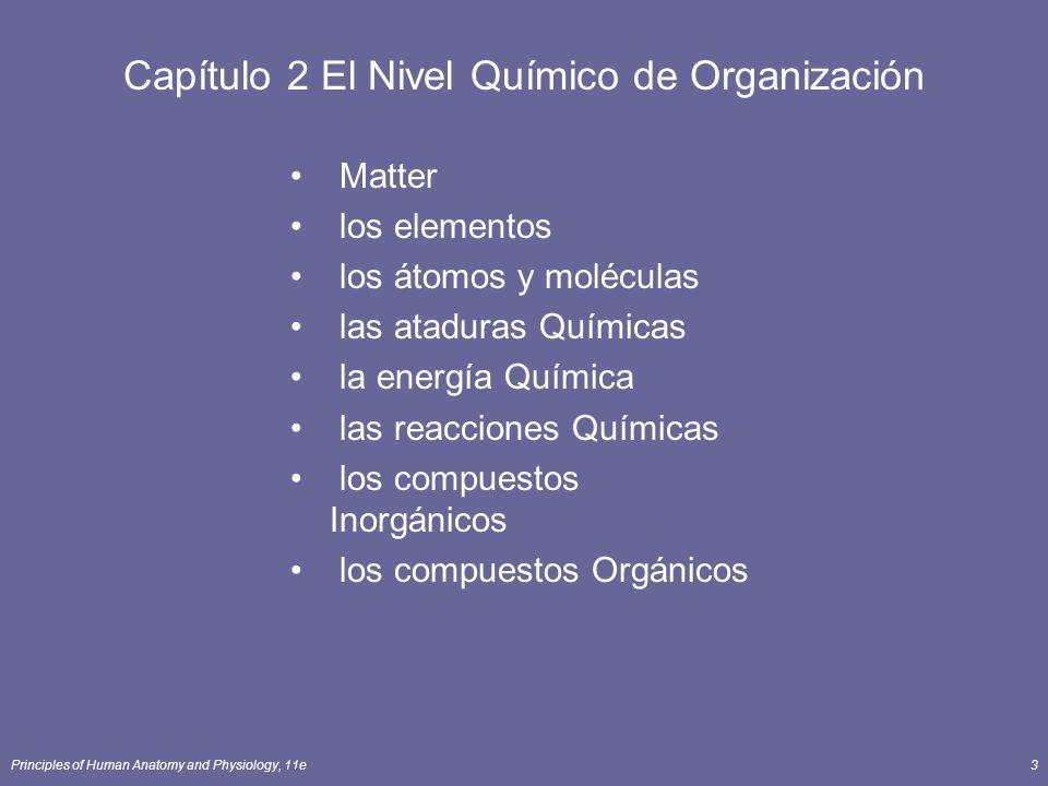 Principles of Human Anatomy and Physiology, 11e3 Capítulo 2 El Nivel Químico de Organización Matter los elementos los átomos y moléculas las ataduras