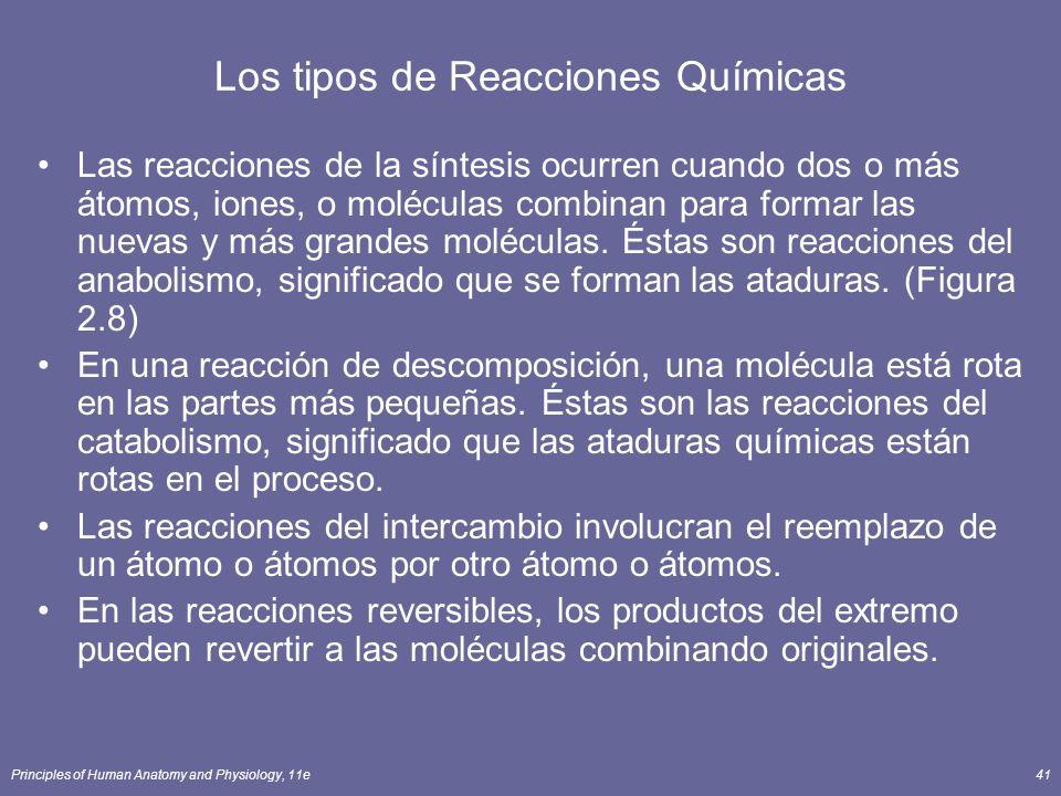 Principles of Human Anatomy and Physiology, 11e41 Los tipos de Reacciones Químicas Las reacciones de la síntesis ocurren cuando dos o más átomos, iones, o moléculas combinan para formar las nuevas y más grandes moléculas.