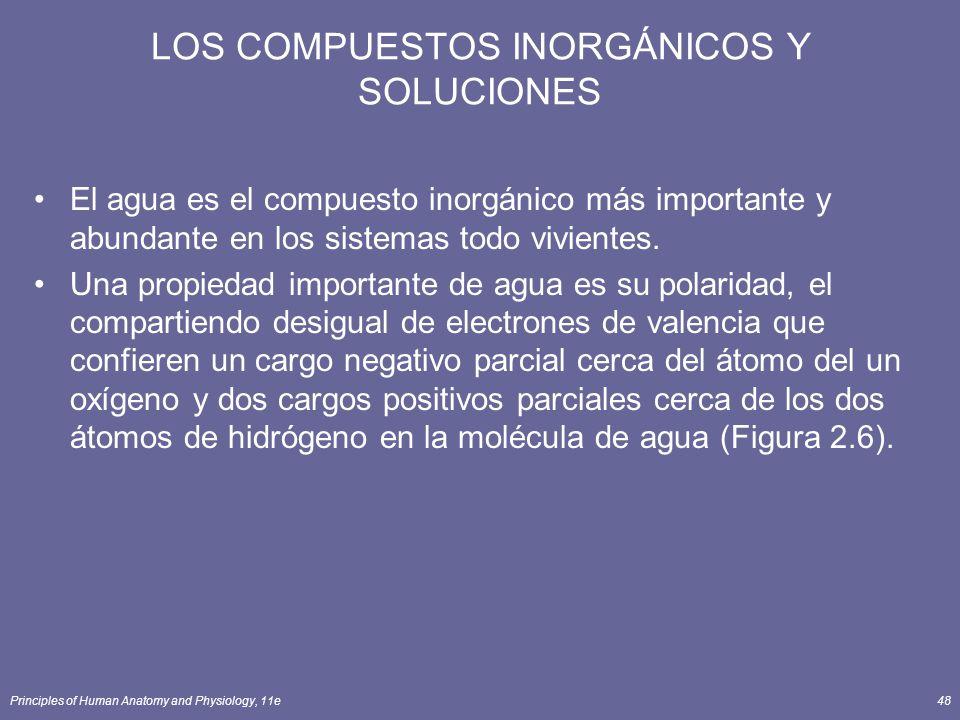 Principles of Human Anatomy and Physiology, 11e48 LOS COMPUESTOS INORGÁNICOS Y SOLUCIONES El agua es el compuesto inorgánico más importante y abundant