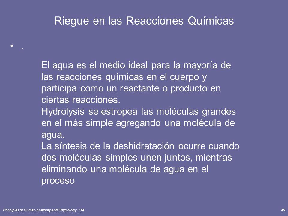 Principles of Human Anatomy and Physiology, 11e49 Riegue en las Reacciones Químicas.
