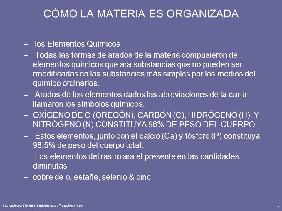 Principles of Human Anatomy and Physiology, 11e5 CÓMO LA MATERIA ES ORGANIZADA – los Elementos Químicos – Todas las formas de arados de la materia compusieron de elementos químicos que ara substancias que no pueden ser rmodificadas en las substancias más simples por los medios del químico ordinarios.