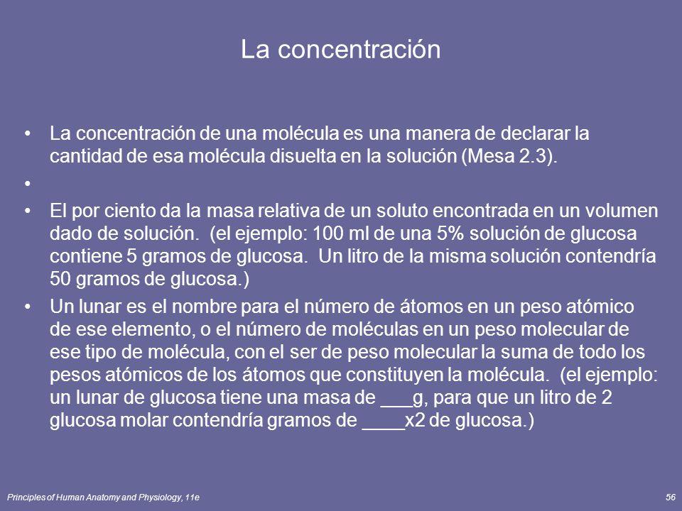 Principles of Human Anatomy and Physiology, 11e56 La concentración La concentración de una molécula es una manera de declarar la cantidad de esa molécula disuelta en la solución (Mesa 2.3).