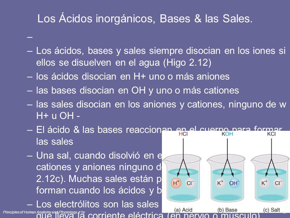 Principles of Human Anatomy and Physiology, 11e57 Los Ácidos inorgánicos, Bases & las Sales. – –Los ácidos, bases y sales siempre disocian en los ione