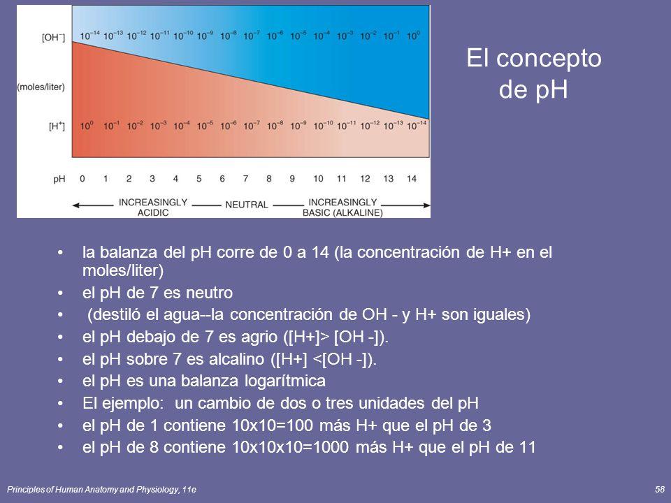 Principles of Human Anatomy and Physiology, 11e58 El concepto de pH la balanza del pH corre de 0 a 14 (la concentración de H+ en el moles/liter) el pH de 7 es neutro (destiló el agua--la concentración de OH - y H+ son iguales) el pH debajo de 7 es agrio ([H+]> [OH -]).