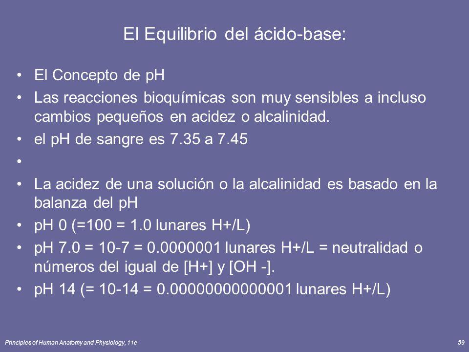 Principles of Human Anatomy and Physiology, 11e59 El Equilibrio del ácido-base: El Concepto de pH Las reacciones bioquímicas son muy sensibles a incluso cambios pequeños en acidez o alcalinidad.