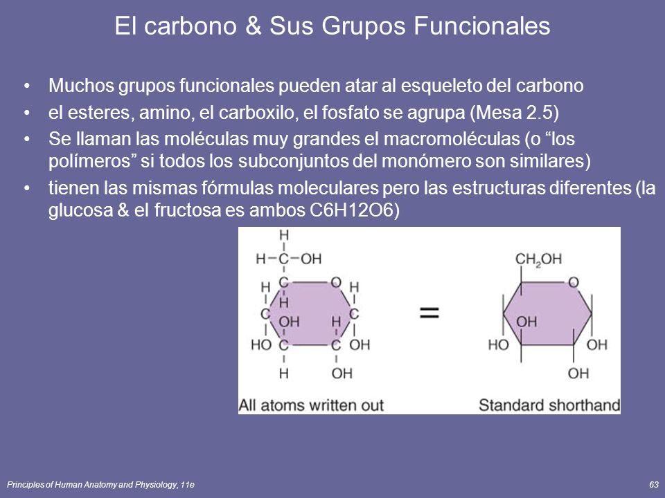 Principles of Human Anatomy and Physiology, 11e63 Muchos grupos funcionales pueden atar al esqueleto del carbono el esteres, amino, el carboxilo, el fosfato se agrupa (Mesa 2.5) Se llaman las moléculas muy grandes el macromoléculas (o los polímeros si todos los subconjuntos del monómero son similares) tienen las mismas fórmulas moleculares pero las estructuras diferentes (la glucosa & el fructosa es ambos C6H12O6) El carbono & Sus Grupos Funcionales
