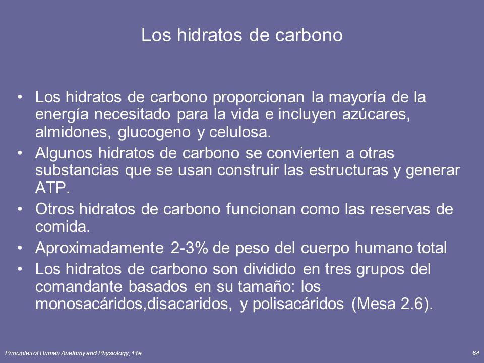 Principles of Human Anatomy and Physiology, 11e64 Los hidratos de carbono Los hidratos de carbono proporcionan la mayoría de la energía necesitado para la vida e incluyen azúcares, almidones, glucogeno y celulosa.