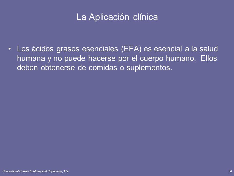 Principles of Human Anatomy and Physiology, 11e76 La Aplicación clínica Los ácidos grasos esenciales (EFA) es esencial a la salud humana y no puede hacerse por el cuerpo humano.