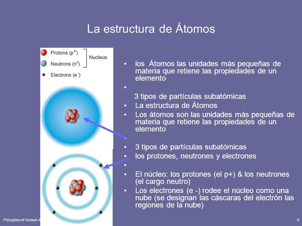 Principles of Human Anatomy and Physiology, 11e8 La estructura de Átomos los Átomos las unidades más pequeñas de materia que retiene las propiedades de un elemento 3 tipos de partículas subatómicas La estructura de Átomos Los átomos son las unidades más pequeñas de materia que retiene las propiedades de un elemento 3 tipos de partículas subatómicas los protones, neutrones y electrones El núcleo: los protones (el p+) & los neutrones (el cargo neutro) Los electrones (e -) rodee el núcleo como una nube (se designan las cáscaras del electrón las regiones de la nube)