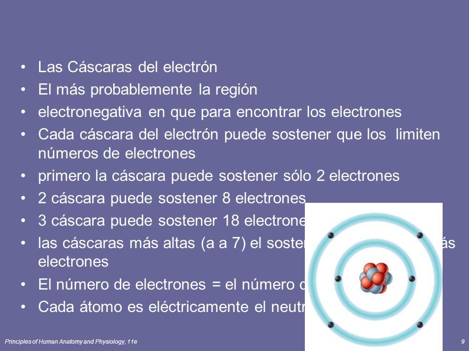 Principles of Human Anatomy and Physiology, 11e9 Las Cáscaras del electrón El más probablemente la región electronegativa en que para encontrar los electrones Cada cáscara del electrón puede sostener que los limiten números de electrones primero la cáscara puede sostener sólo 2 electrones 2 cáscara puede sostener 8 electrones 3 cáscara puede sostener 18 electrones las cáscaras más altas (a a 7) el sostenimiento muchos más electrones El número de electrones = el número de protones Cada átomo es eléctricamente el neutral; el cargo = 0
