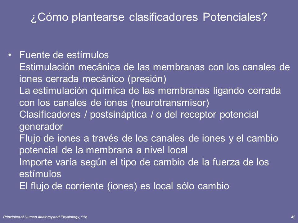 Principles of Human Anatomy and Physiology, 11e42 ¿Cómo plantearse clasificadores Potenciales? Fuente de estímulos Estimulación mecánica de las membra