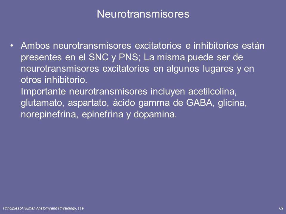 Principles of Human Anatomy and Physiology, 11e69 Neurotransmisores Ambos neurotransmisores excitatorios e inhibitorios están presentes en el SNC y PN
