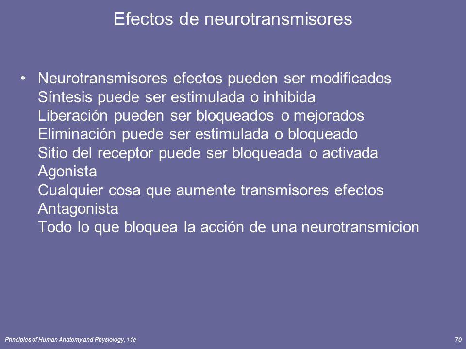 Principles of Human Anatomy and Physiology, 11e70 Efectos de neurotransmisores Neurotransmisores efectos pueden ser modificados Síntesis puede ser est