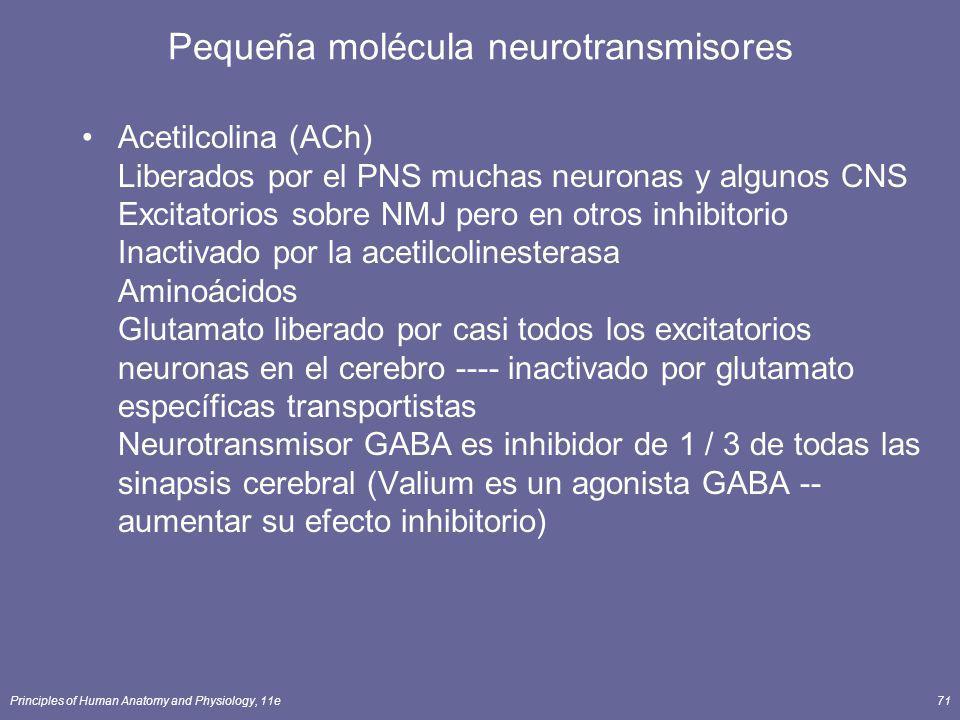 Principles of Human Anatomy and Physiology, 11e71 Pequeña molécula neurotransmisores Acetilcolina (ACh) Liberados por el PNS muchas neuronas y algunos