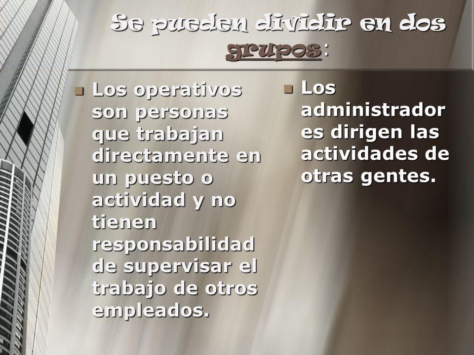 Se pueden dividir en dos grupos : grupos Los operativos son personas que trabajan directamente en un puesto o actividad y no tienen responsabilidad de
