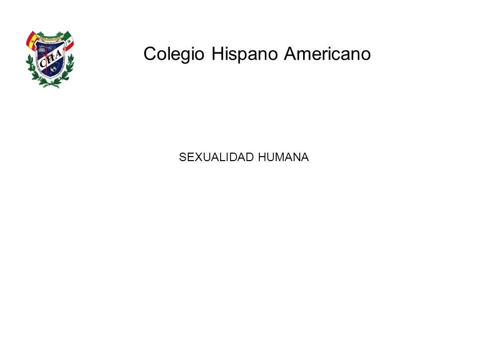 Colegio Hispano Americano SEXUALIDAD HUMANA