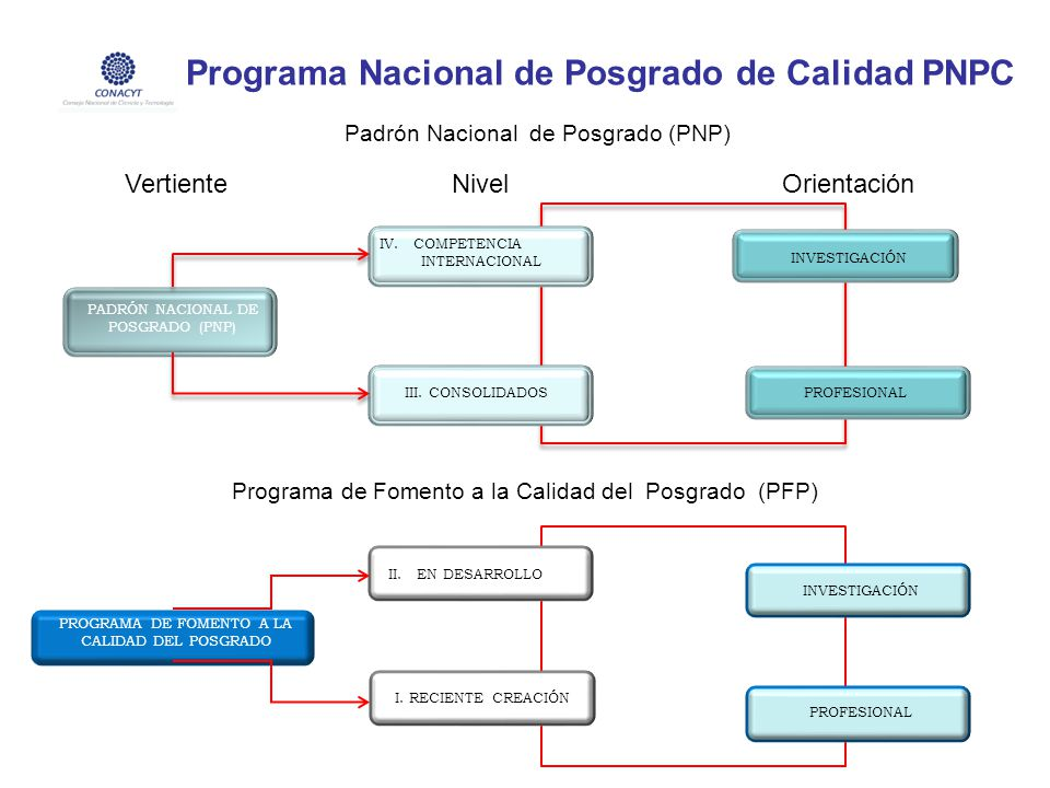 VERTIENTES, NIVELES Y ORIENTACIÓN DEL PNPC PADRÓN NACIONAL DE POSGRADO (PNP) IV. COMPETENCIA INTERNACIONAL III. CONSOLIDADOS INVESTIGACIÓN PROFESIONAL