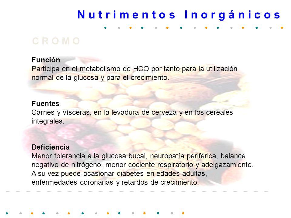 N u t r i m e n t o s I n o r g á n i c o s C R O M O Función Participa en el metabolismo de HCO por tanto para la utilización normal de la glucosa y