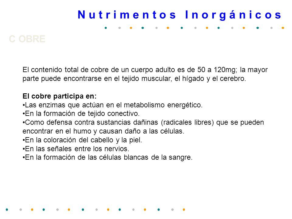 Edad Magnesio (mg/día) Consumo recomendado Magnesio (mg/día) Consumo recomendado 6-11 meses80 1-2 años85 3-5 años120 6-9 años200 10-13 años280 Mujeres280 Mujeres embarazadas280 Mujeres lactantes330 Hombres350