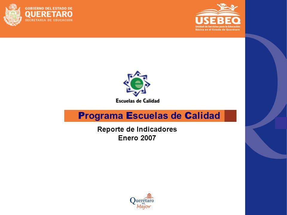 P rograma E scuelas de C alidad Reporte de Indicadores Enero 2007
