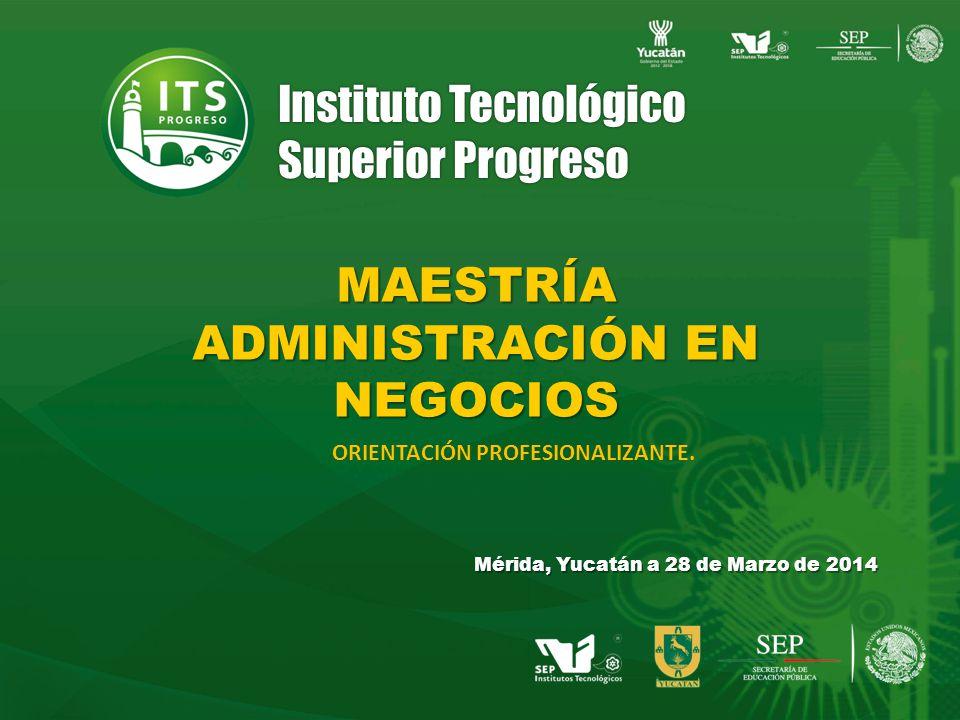 Instituto Tecnológico Superior Progreso MAESTRÍA ADMINISTRACIÓN EN NEGOCIOS Mérida, Yucatán a 28 de Marzo de 2014 ORIENTACIÓN PROFESIONALIZANTE.