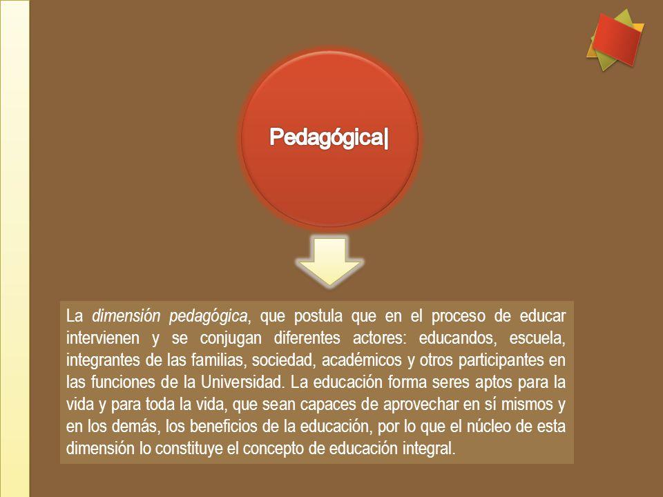 La dimensión pedagógica, que postula que en el proceso de educar intervienen y se conjugan diferentes actores: educandos, escuela, integrantes de las familias, sociedad, académicos y otros participantes en las funciones de la Universidad.
